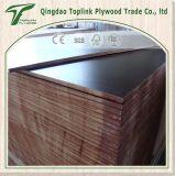 La base del álamo, de la madera dura y de la cosechadora una película caliente de la prensa del tiempo hizo frente a la madera contrachapada