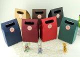 Le modèle neuf a personnalisé le sac d'emballage de papier de cadeau de traitement de connexion