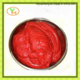 Pasta de tomate enlatada Legume de tomate fresco