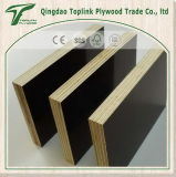 La base del álamo una película caliente del negro de la prensa del tiempo hizo frente a la madera contrachapada para la construcción