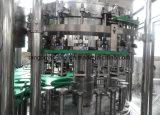 Chaîne de production remplissante de boissons carbonatées de boisson pour la bouteille en verre d'animal familier