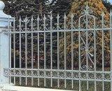 Cerca de ferro fundido e ornamentos de porta