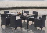 Mimbre al aire libre Furntiure Juego de comedor, jardín de mimbre mesa y silla (MTC-145)