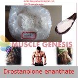 ボディービルをやる白いステロイドはDrostanolone Enanthateを粉にする