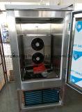 Réfrigérateur et congélateur commerciaux de souffle d'acier inoxydable de réfrigérateur