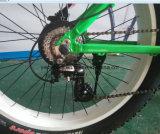 びん電池が付いている電気土のバイク
