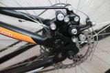 26 Pama 21の速度山の自転車