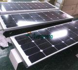 Tout en un panneau solaire Rue lumière solaire 30W 80W 100W