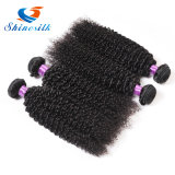 o cabelo Curly malaio 3PCS do Virgin 7A cru livra o cabelo malaio do Virgin do transporte