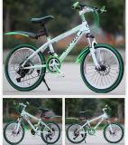 A dupla Disc-Brake 24 polegada MTB bicicleta bicicletas de montanha