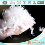 Precios baratos de plumas de pato blanco edredón el edredón de plumas de ganso