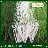 フットボールおよびサッカーのための異なった種類そしてカラー人工的な草