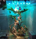 Cadre acrylique personnalisé de reptile d'Afficheur LED de cadre de modèle