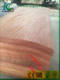 Folheado giratório de Plb do corte para o mercado de India usado para a produção da madeira compensada