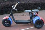 [لكتريك] [هرلي] درّاجة ثلاثية مع [1000و] [60ف/20ه]