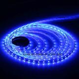 300 striscia blu del LED SMD5050 LED