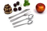 Cutlery конструкции высокого качества нержавеющая сталь славного установленная