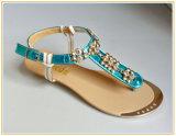 Sandália do vestido da forma das mulheres