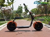 2 motocicleta eléctrica eléctrica de la vespa 40km/H de la rueda con el EEC