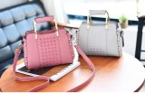 Handbag Ladies Bag (WDL0168)金属のハンドルの方法女性
