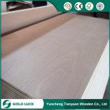 madera contrachapada del anuncio publicitario del pegamento Bintangor/Okoume/Pine/Poplar de 2-25m m WBP