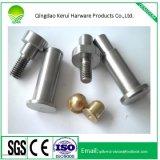 De professionele CNC Delen die van het Aluminium van het Plastiek en van het Metaal van Delen CNC Delen machinaal bewerken
