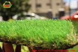Tappeto erboso artificiale del monofilamento per il campo del campo da giuoco del banco