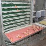 프레임 층 닭 감금소 시스템 또는 가금 농기구