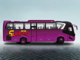 [سونلونغ] عمليّة بيع حارّ شعبيّة نموذجيّة ديزل مسافر حافلة ([سلك6118ا])