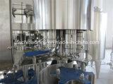 ペットびんによって炭酸塩化される飲む充填機(DCGFシリーズ)