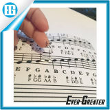 Transparent su ordinazione Plastic Removable Piano e Keyboard Note Stickers