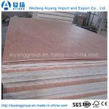 madeira compensada comercial laminada de 4X8 Bintangor folheado natural
