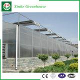 야채 꽃을%s 농업 PC 장 온실