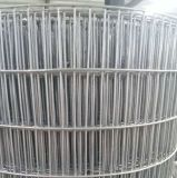 Maille de fil d'acier de fer de Galvanzied (soudée ou tissée)