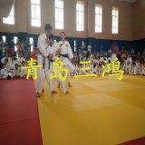 Bjj Jiu Jitsu Flexi rotolato sulle stuoie di judo di Tatami, stuoia di Tatami di judo del pavimento della gomma piuma di MMA