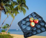 Venta caliente Mundo Popular PP desechables de plástico Bandeja de frutas