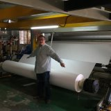 rodillo magnífico grande del papel de traspaso térmico de la sublimación de 126 '' /3.2m para la impresora de Reggaini