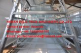 De automatische Apparatuur van het Systeem van de Verwijdering van de Mest van de Kip voor een een Kooi & Kippenren van de Kip van de Laag van het Frame