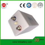 batteria al ferro-nichel di lunga vita Battery/Ni-Fe di 12V 24V 48V