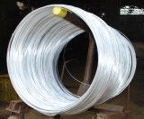 Bobina d'acciaio galvanizzata con l'alta qualità