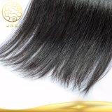 cabelo humano humano europeu da queratina de Remy do Virgin do cabelo reto da classe 7A