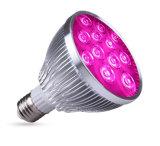 Le piante LED del tavolo o dell'interno coltivano l'indicatore luminoso