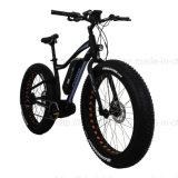 불안정한 모터 바닷가 함 전기 뚱뚱한 자전거