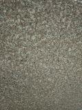 Großhandelsnebelhafte Brown Granit-Fliese des chinese-G664