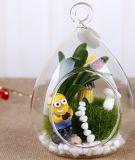 Hängende Borosilicat-Glaskugeln für Hochzeits-Dekoration