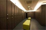 Utilisé un club de fitness casiers numériques colorés pour la vente