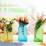 Vaas de van uitstekende kwaliteit van het Glas van de Decoratie van het Huis