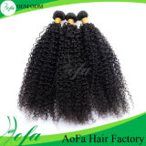 Estensione crespa superiore non trattata dei capelli umani del tessuto dei capelli ricci