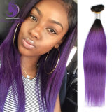 1b/Purple 2 음색 Ombre 색깔 인간적인 Remy 머리 씨실