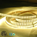 ETL 144LED/M 5050outdoorlight 두 배 줄 LED Ribbon/LED 지구 빛 LED